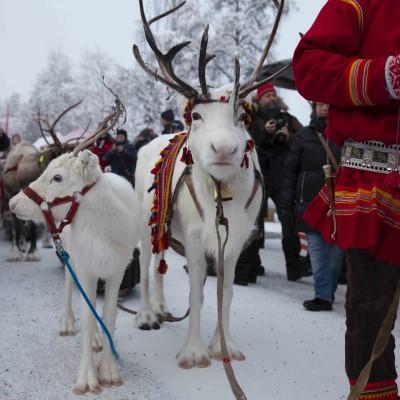 Jokkmokk winter market 2022